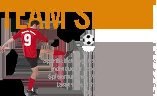 teamsport-button
